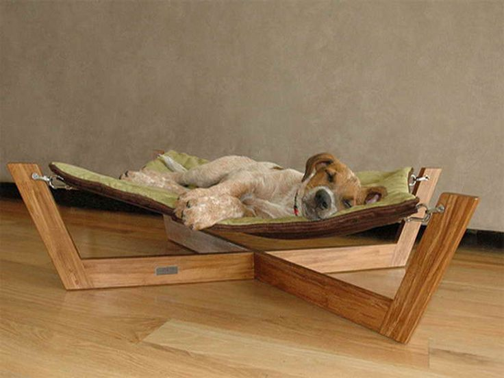 Unique Types of Luxury Pet Furniture