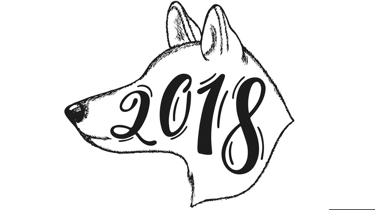 Looking Ahead to the Biggest Dog Trends for 2018