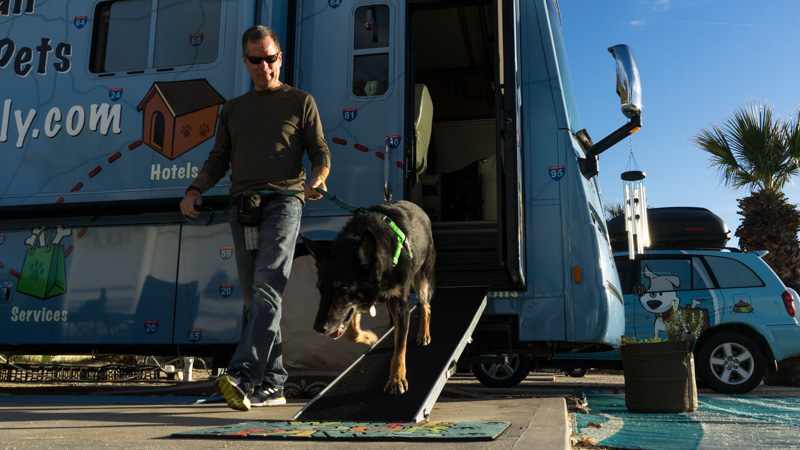 Tips For Choosing & Using An RV Dog Ramp