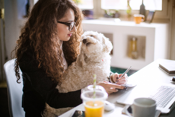 6 Dog-Friendly Companies to Work For