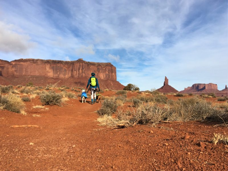 Visiting Monument Valley With Dogs