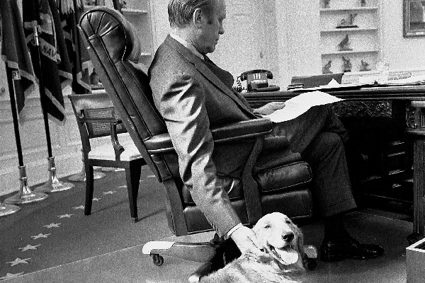 10 Fun Dog Names for the US Presidents' Dogs