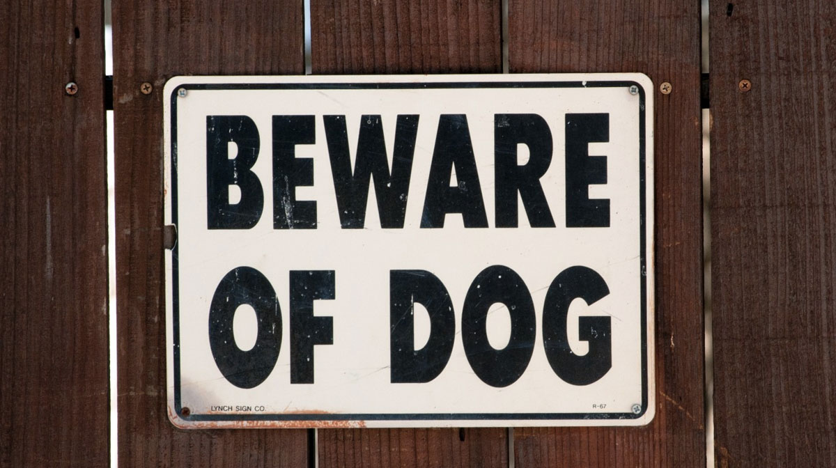 'Beware of Dog' Sign Doesn't Live Up to Its Name in Hilarious Little Video