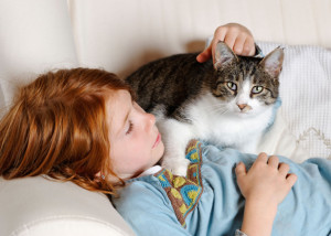 4 Ways To Make Your Cat Fall In Love With You
