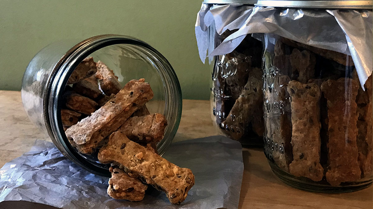 How to Make Crunch-tastic Cheddar Sage Dog Biscuits for Your Fave Snack Buddy