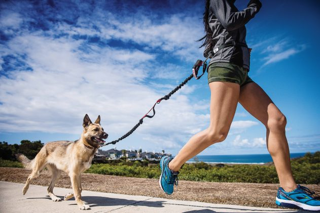 How I Started Running With My Dog