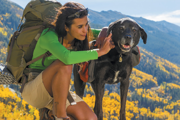 Hiking With Dogs — Tips for Bringing Your Pup on the Trail