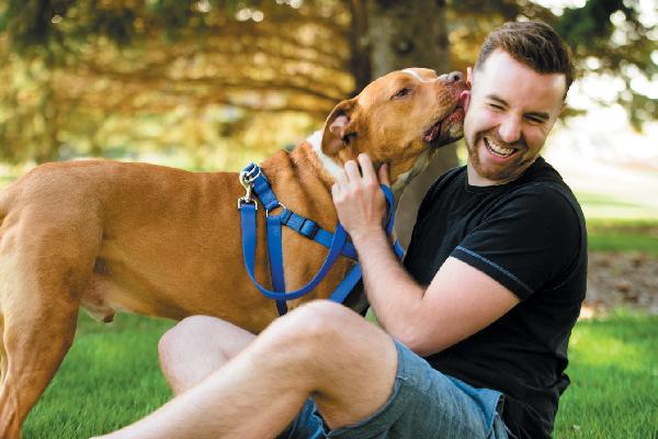 5 Keys to Understanding Dog Body Language