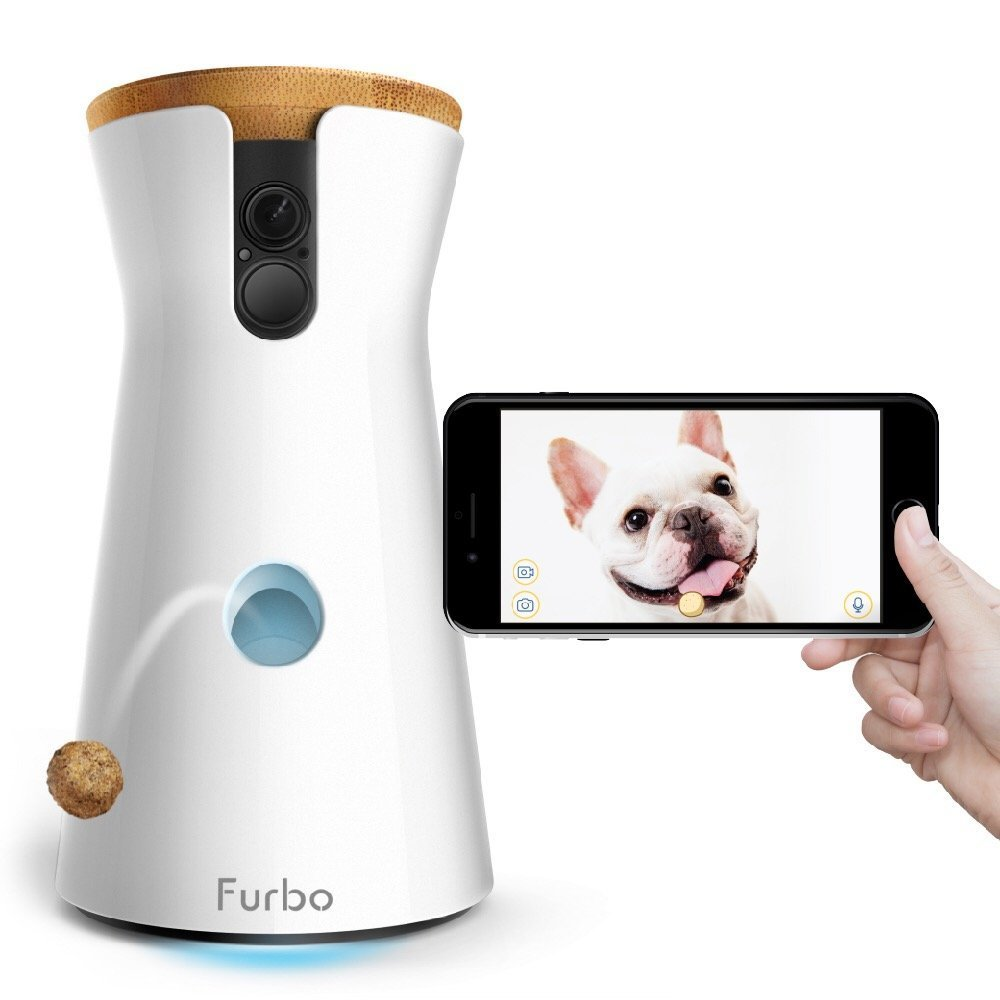 The Coolest Pet Tech Makes Your Dog's Life Better