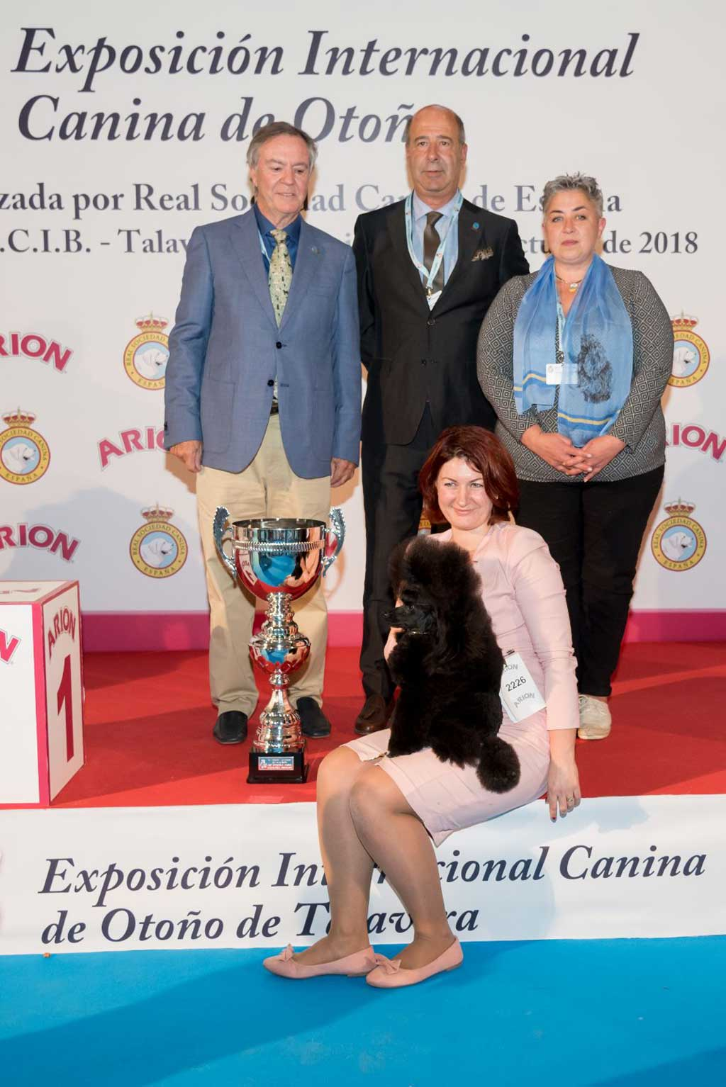 Results of The 35th Edition of The International Dog Show of Autumn