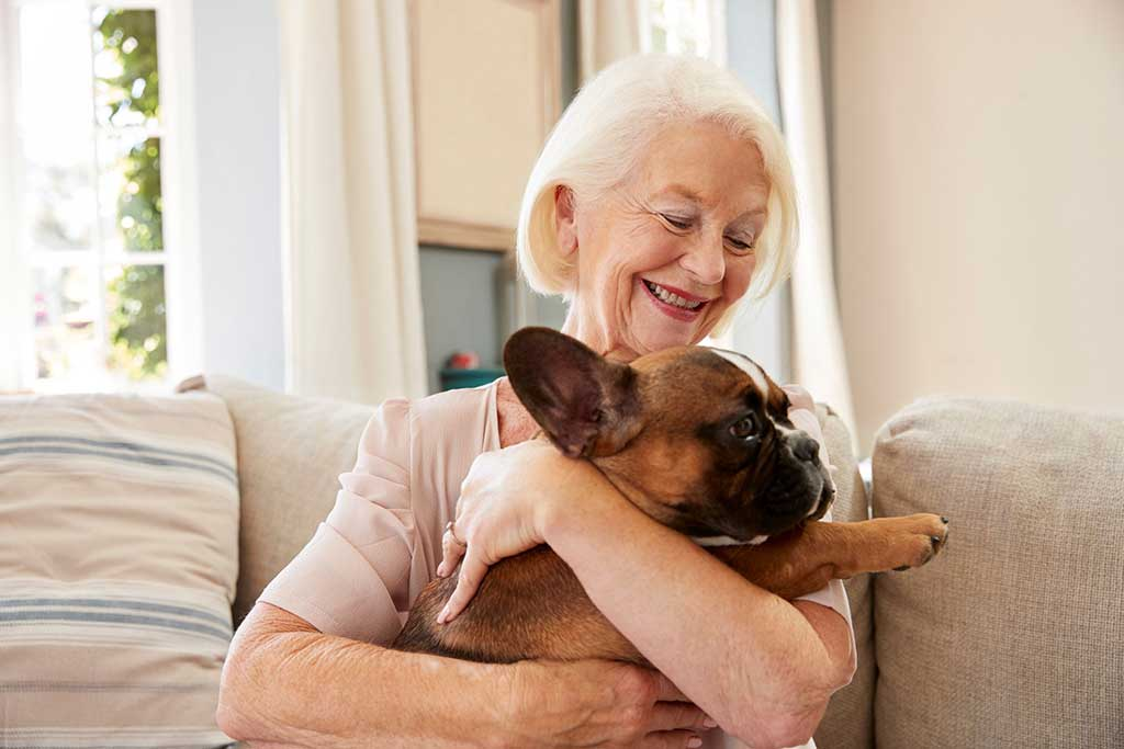 Benefits of Incorporating a Pet at Home For The Elderly