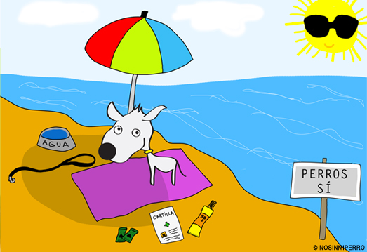 Tips for going to the beach with your dog