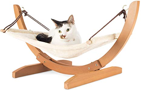 Useful Cat Furniture And Designs