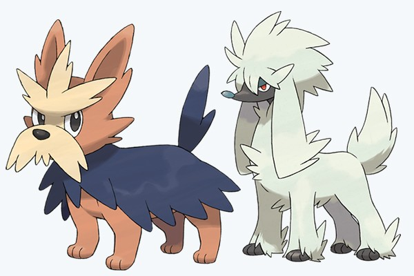 dog pokemon