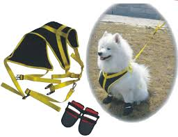 pet Products and Equipment
